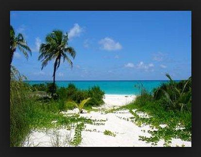 View From the Rear of A Bahamas Villa