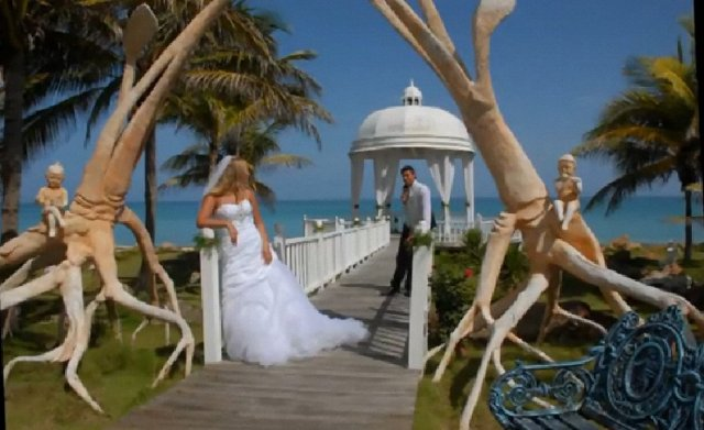 Our Caribbean Wedding Coordinators Help Secure the Best Locatios for the Wedding Photos